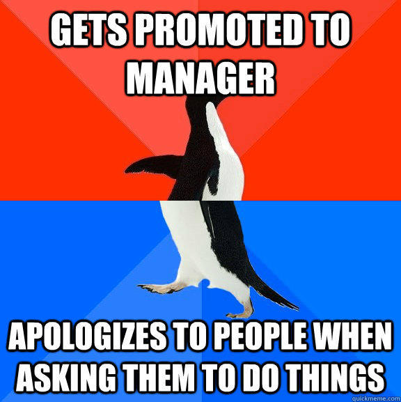 Gets promoted to manager Apologizes to people when asking them to do things - Gets promoted to manager Apologizes to people when asking them to do things  Socially Awesome Awkward Penguin