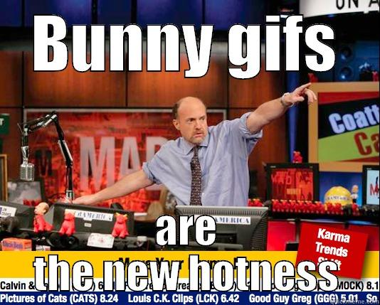 BUNNY GIFS ARE THE NEW HOTNESS Mad Karma with Jim Cramer