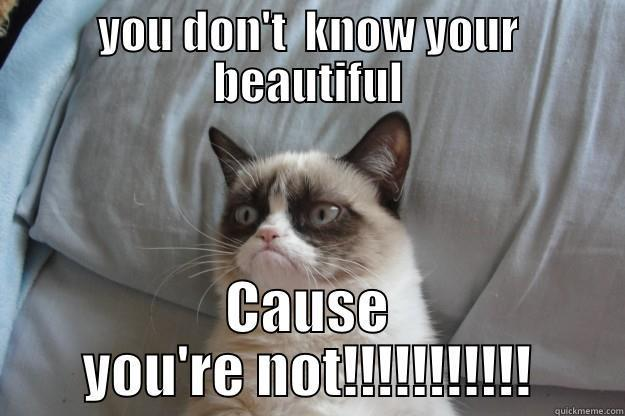 YOU DON'T  KNOW YOUR BEAUTIFUL CAUSE YOU'RE NOT!!!!!!!!!!! Grumpy Cat