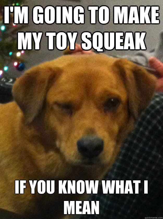 I'm going to make my toy squeak  If you know what I mean