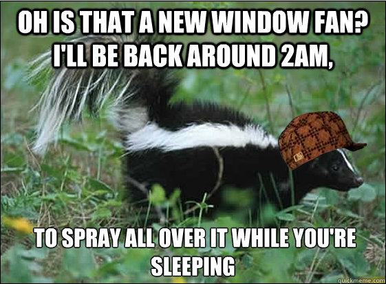 oh is that a new window fan? I'll be back around 2am,  to spray all over it while you're sleeping  Scumbag Skunk