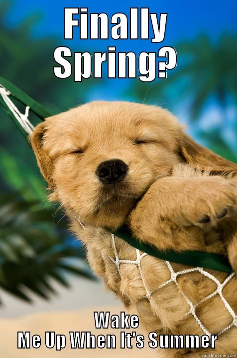 Finally spring? - FINALLY SPRING? WAKE ME UP WHEN IT'S SUMMER Misc