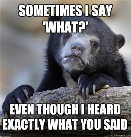 SOMETIMES I SAY 'WHAT?' EVEN THOUGH I HEARD EXACTLY WHAT YOU SAID - SOMETIMES I SAY 'WHAT?' EVEN THOUGH I HEARD EXACTLY WHAT YOU SAID  Confession Bear