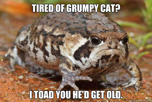 Tired of Grumpy Cat? I toad you he'd get old.