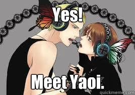 Yes! Meet Yaoi.