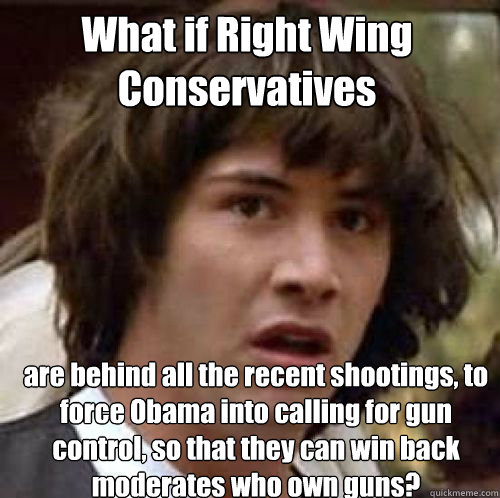 What if Right Wing Conservatives are behind all the recent shootings, to force Obama into calling for gun control, so that they can win back moderates who own guns?