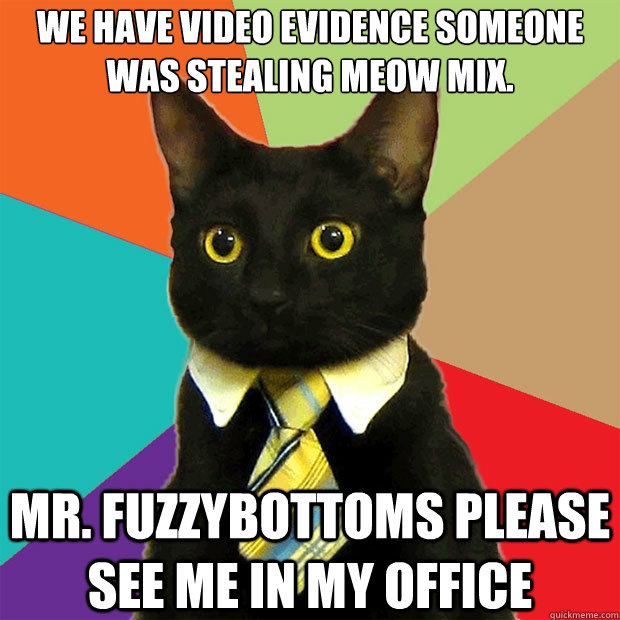 We have video evidence someone was stealing meow mix. mr. fuzzybottoms please see me in my office - We have video evidence someone was stealing meow mix. mr. fuzzybottoms please see me in my office  Business Cat