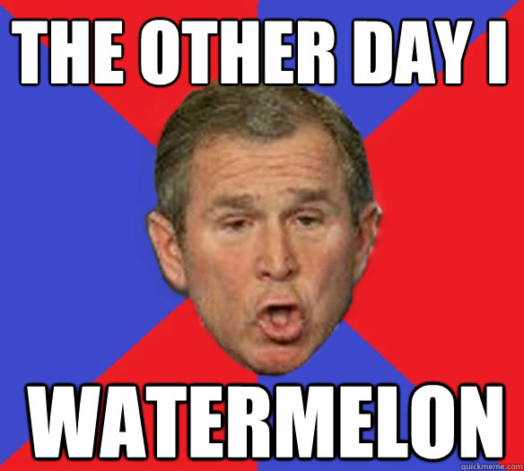 the other day i watermelon - the other day i watermelon  George Bushisms