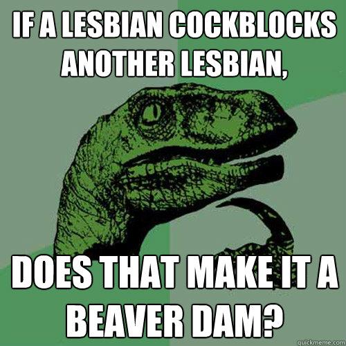 If a lesbian cockblocks another lesbian, does that make it a beaver dam?  Philosoraptor