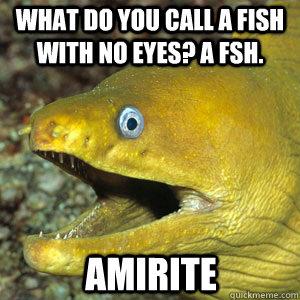 WHAT DO YOU CALL A FISH WITH NO EYES? A FSH. AMIRITE  Amirite Eel