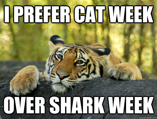 i prefer cat week  over shark week