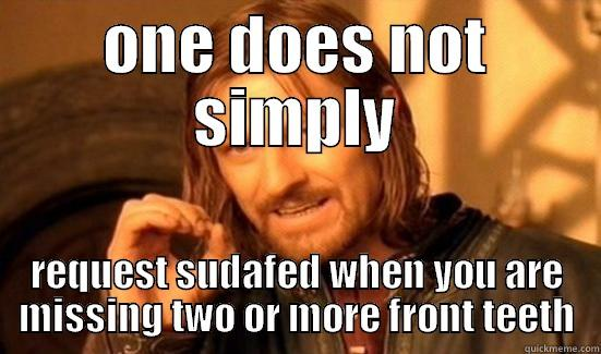 sudafed boromir - ONE DOES NOT SIMPLY REQUEST SUDAFED WHEN YOU ARE MISSING TWO OR MORE FRONT TEETH Boromir