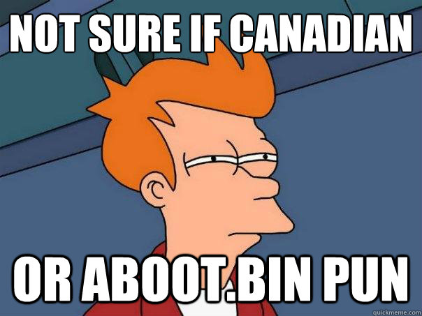 Not sure if Canadian Or aboot.bin pun  - Not sure if Canadian Or aboot.bin pun   Futurama Fry
