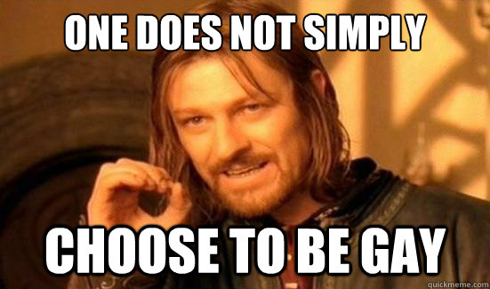 One Does Not Simply Choose to be gay - One Does Not Simply Choose to be gay  Boromir