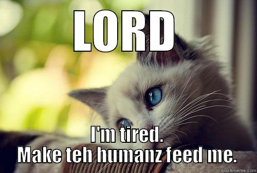 Lord cat - LORD I'M TIRED. MAKE TEH HUMANZ FEED ME. First World Cat Problems