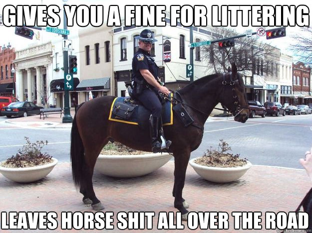 Gives you a fine for littering Leaves horse shit all over the road