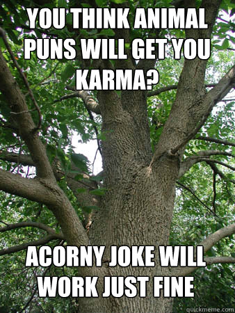 Image of: Punny You Think Animal Puns Will Get You Karma Acorny Joke Will Work Just Fine Quickmeme You Think Animal Puns Will Get You Karma Acorny Joke Will Work Just
