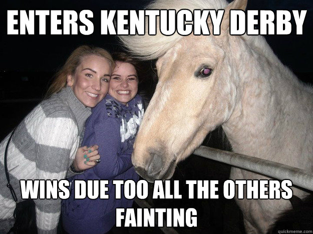enters kentucky derby wins due too all the others fainting  - enters kentucky derby wins due too all the others fainting   Ridiculously Photogenic Horse