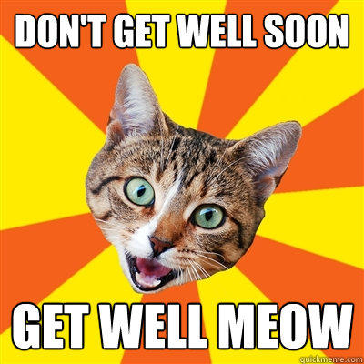 don't get well soon get well meow  Bad Advice Cat