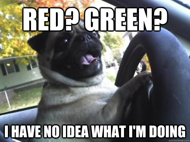 Red? Green? I have no idea what i'm doing - Red? Green? I have no idea what i'm doing  Driving Pug