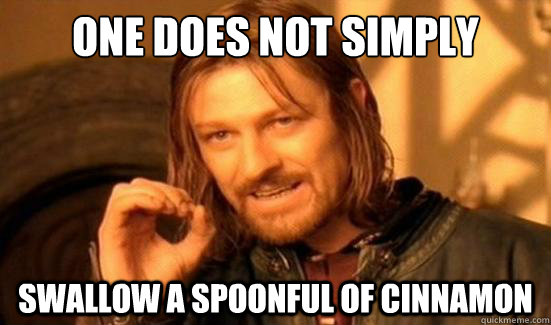 One Does Not Simply Swallow a spoonful of cinnamon - One Does Not Simply Swallow a spoonful of cinnamon  Boromir
