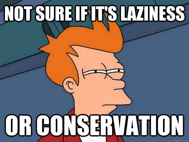 not sure if it's laziness Or conservation - not sure if it's laziness Or conservation  Futurama Fry