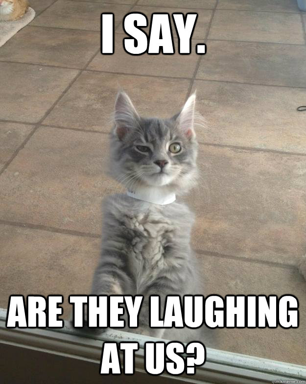 I say. Are they laughing at us? - I say. Are they laughing at us?  Unamused Cat