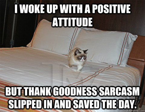 i woke up with a positive attitude but thank goodness sarcasm slipped in and saved the day. - i woke up with a positive attitude but thank goodness sarcasm slipped in and saved the day.  sarcasm