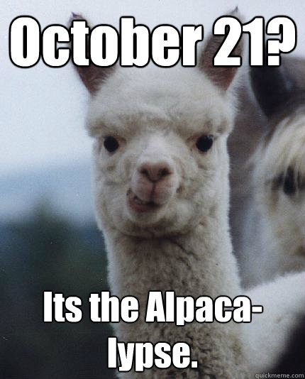October 21? Its the Alpaca-lypse.