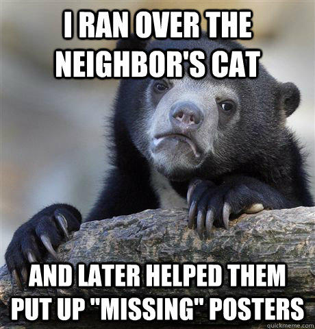 I ran Over The Neighbor's Cat And Later Helped Them Put Up