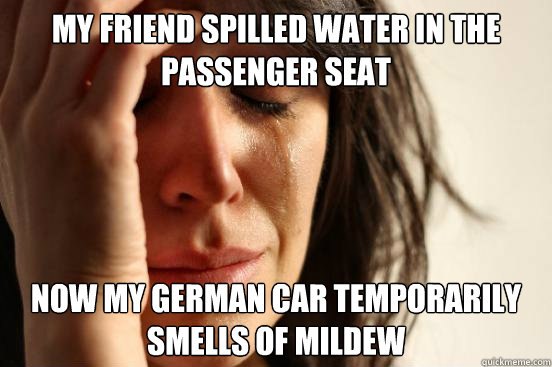my friend spilled water in the passenger seat now my german car temporarily smells of mildew - my friend spilled water in the passenger seat now my german car temporarily smells of mildew  First World Problems