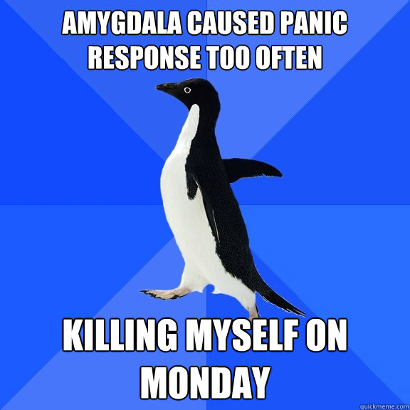 Amygdala caused panic response too often Killing myself on Monday - Amygdala caused panic response too often Killing myself on Monday  Socially Awkward Penguin