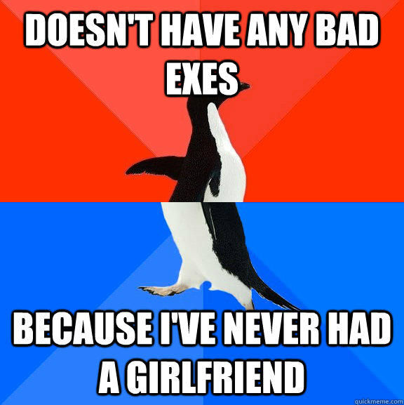 Doesn't have any bad exes Because i've never had a girlfriend  Socially Awesome Awkward Penguin