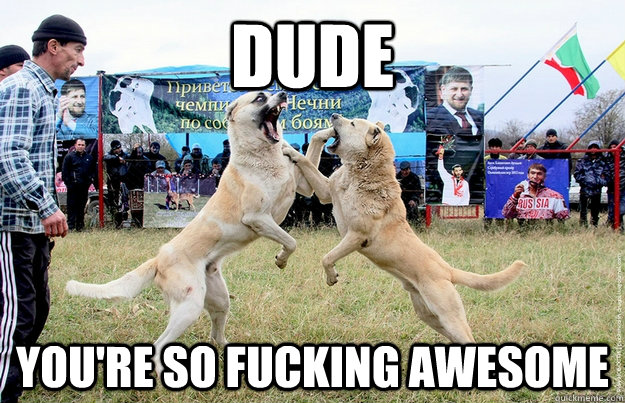 dude you're so fucking awesome - dude you're so fucking awesome  Misc