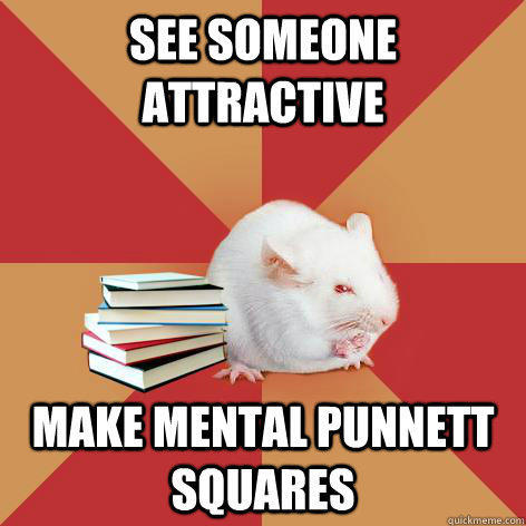 See someone attractive Make mental Punnett Squares  Science Major Mouse