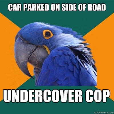 Car parked on side of road Undercover Cop - Car parked on side of road Undercover Cop  Paranoid Parrot