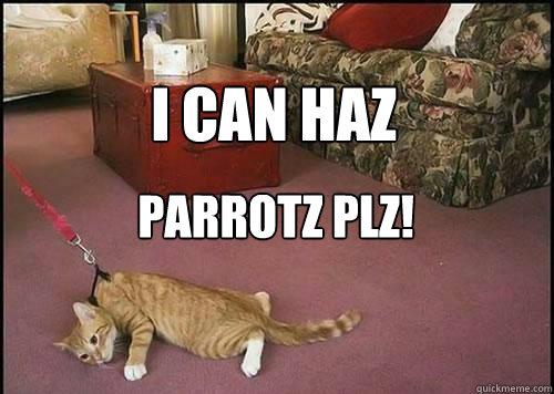 I can haz parrotz plz!