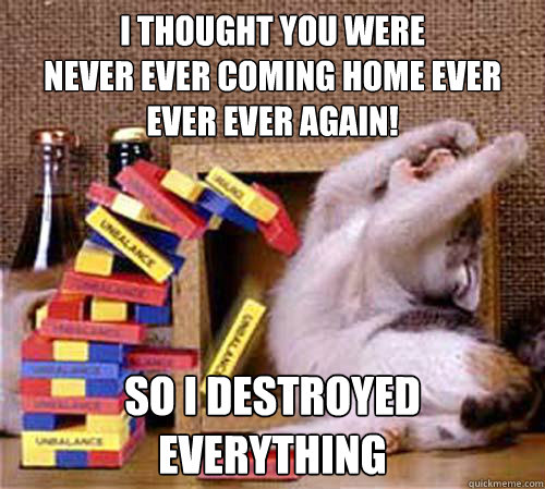 I THOUGHT YOU WERE NEVER EVER COMING HOME EVER EVER EVER AGAIN! SO I DESTROYED EVERYTHING - I THOUGHT YOU WERE NEVER EVER COMING HOME EVER EVER EVER AGAIN! SO I DESTROYED EVERYTHING  Jenga Cat