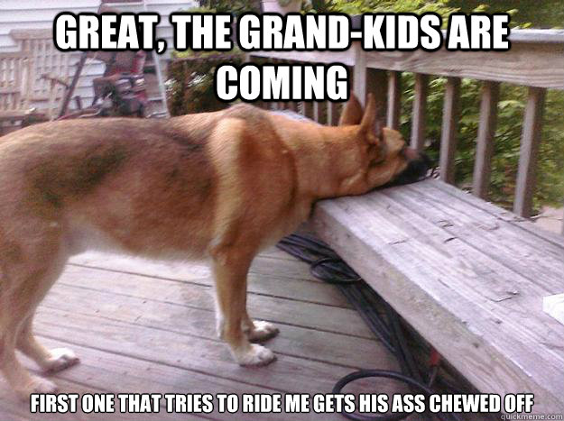 Great, The grand-kids are coming first one that tries to ride me gets his ass chewed off  First World Dog problems