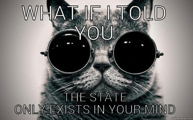 WHAT IF I TOLD YOU THE STATE ONLY EXISTS IN YOUR MIND Morpheus Cat Facts