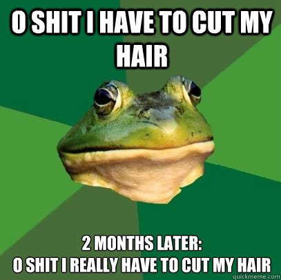 O shit i have to cut my hair 2 months later: O shit i really have to cut my hair - O shit i have to cut my hair 2 months later: O shit i really have to cut my hair  Foul Bachelor Frog
