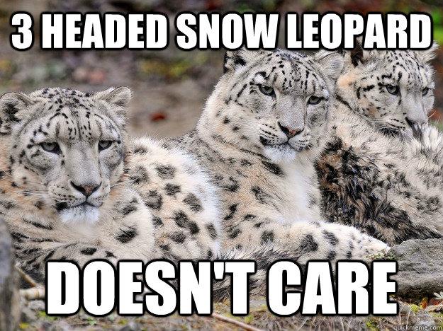 3 Headed Snow Leopard Memes Quickmeme