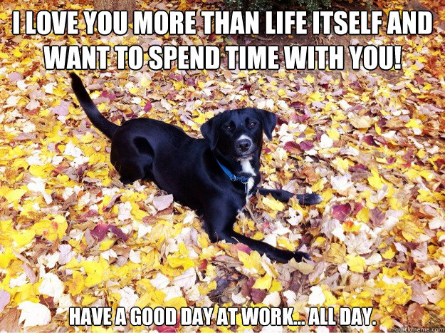 I love you more than life itself and want to spend time with you! Have a good day at work... all day.  - I love you more than life itself and want to spend time with you! Have a good day at work... all day.   Guilt Giving Good Dog