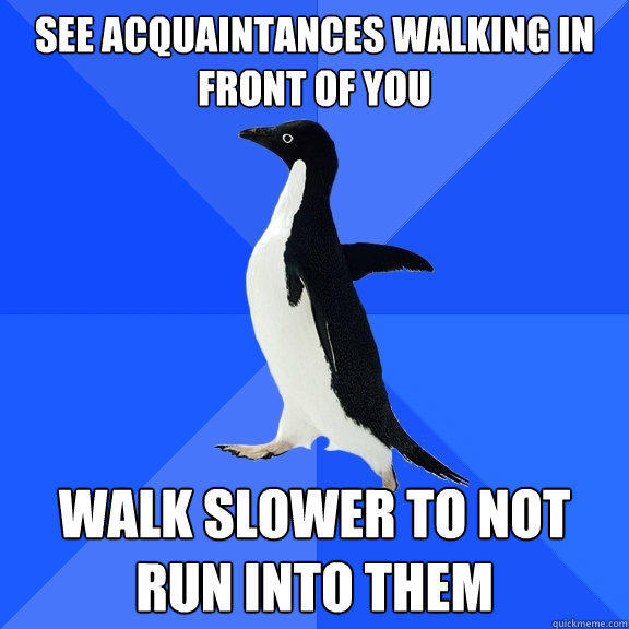 See acquaintances walking in front of you walk slower to not run into them - See acquaintances walking in front of you walk slower to not run into them  Socially Awkward Penguin