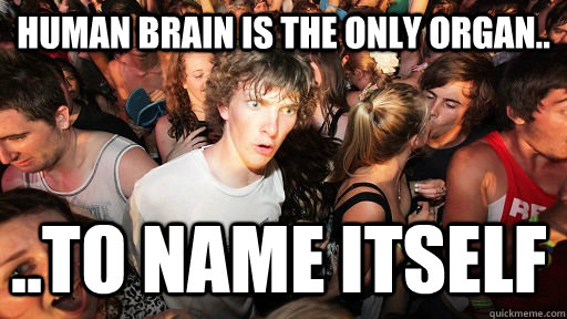 human Brain is the only organ.. ..to name itself - human Brain is the only organ.. ..to name itself  Sudden Clarity Clarence