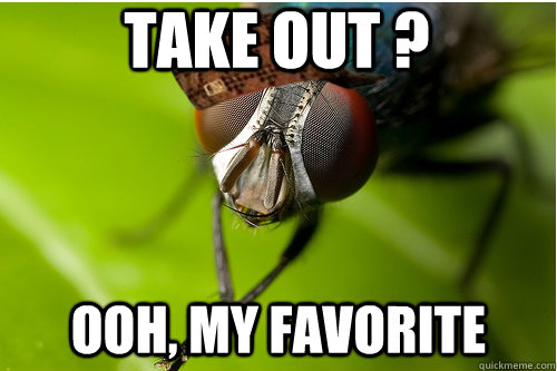 take out ? ooh, my favorite - take out ? ooh, my favorite  Scumbag Fly