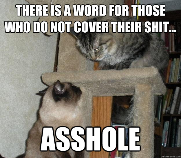 There is a word for those who do not cover their shit... Asshole - There is a word for those who do not cover their shit... Asshole  Battle Cats