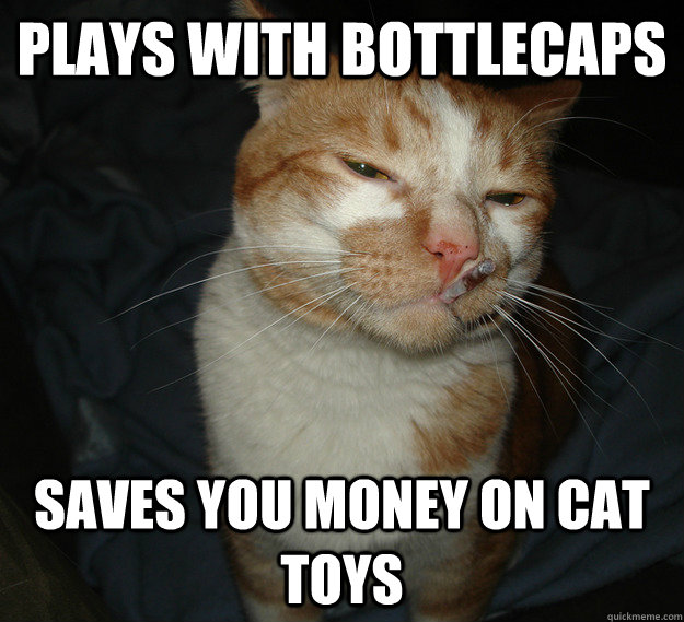 Plays with bottlecaps Saves you money on cat toys