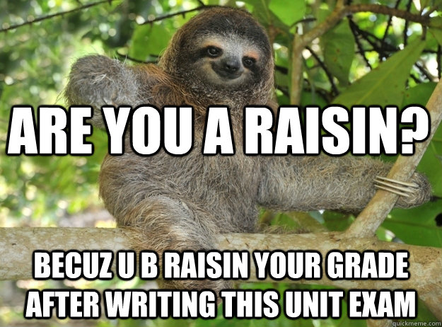 Are you a raisin? Becuz u b raisin your grade after writing this unit exam  Sloth