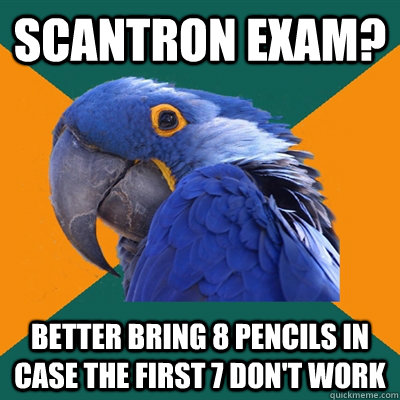 Scantron exam? Better bring 8 pencils in case the first 7 don't work - Scantron exam? Better bring 8 pencils in case the first 7 don't work  Paranoid Parrot